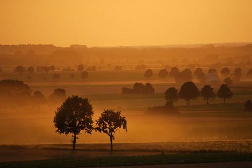 autumn sunset red orange tree field yellow evening abend warm sonnenuntergang awesome herbst hannover gelb dust hanover baum staub 55200 nikond60 gehrden