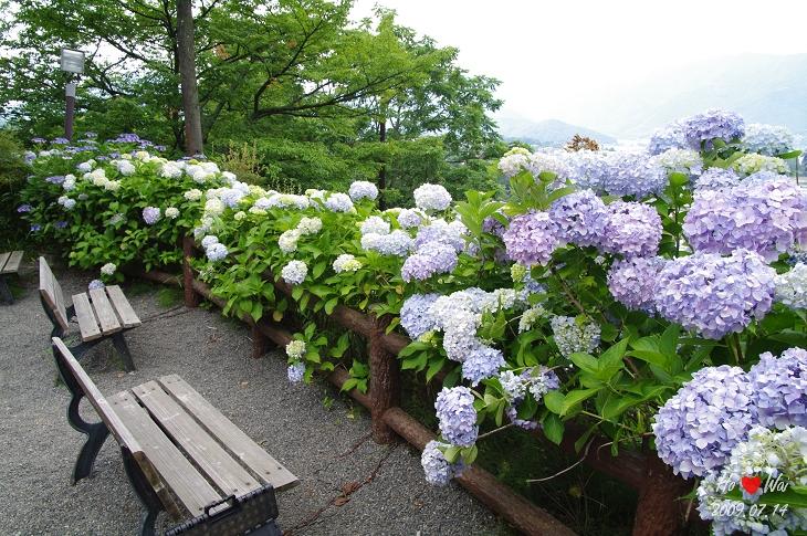 Japan_0714_1220