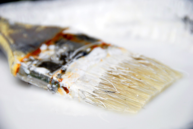 DIY Paint Brush