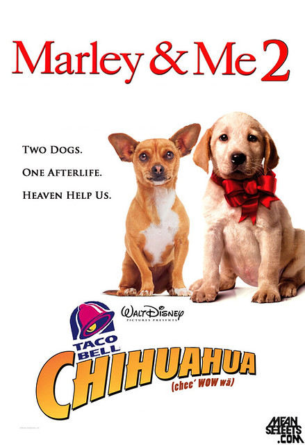 marley and me 2 taco bell chihuahua flickr photo