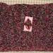pink pillow 1