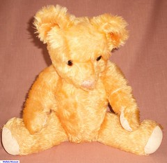 Boril Teddy