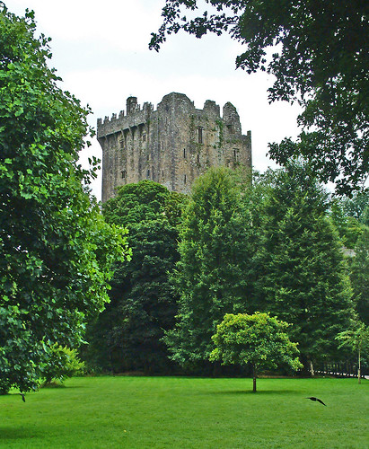 ireland green castle leaves stone grey cork eire blarney grounds blarneycastle corcaigh blarneystone