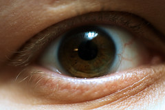 iris, contact lens, vision care, brown, skin, macro photography, eyelash, close-up, blue, eye, organ,