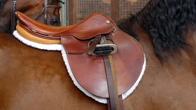English Saddle | Flickr - Photo Sharing!