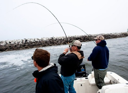 Ocean fishing trips now available the caddis fly for Ocean fishing oregon
