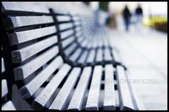 focus benches
