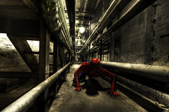 Spiderman on the move