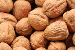 hazelnut(0.0), plant(0.0), fruit(0.0), nuts & seeds(1.0), tree nuts(1.0), produce(1.0), food(1.0), nut(1.0), walnut(1.0),