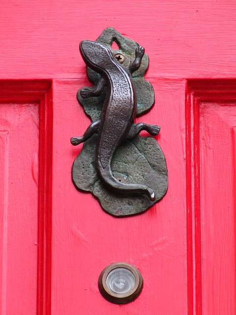 Knock knock a gallery on flickr - Turtle door knocker ...