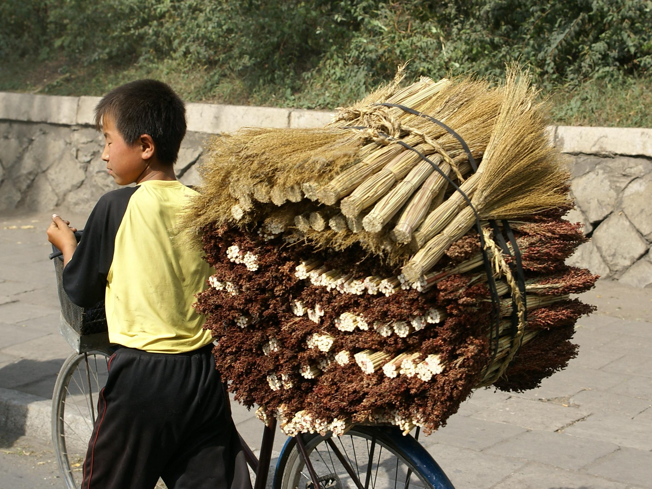 Delivering brooms