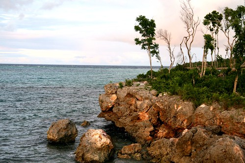 trees sky green water coral rock clouds coast view cuba atlantic holguin topshots natureselegantshots