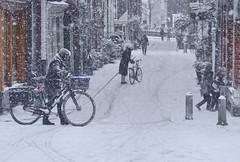 Snow blizzard surprises bikers in Amsterdam