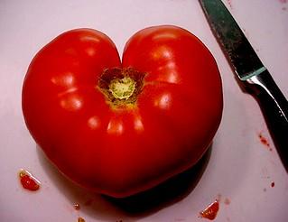 I ♥ tomatoes!