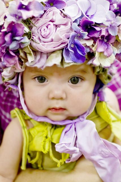 venus de violets