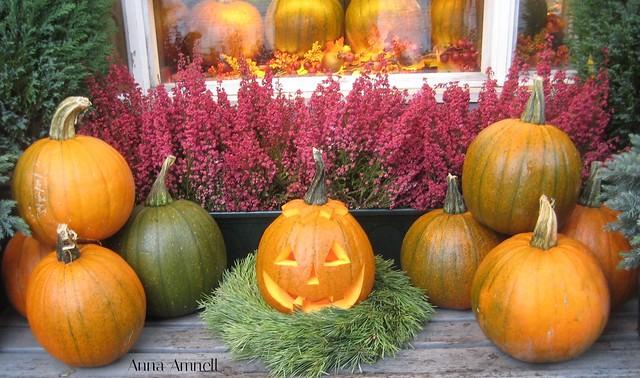Halloween in Helsinki
