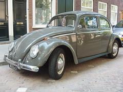 Volkswagen Beetle Kever Maggiolino Käfer Coccinelle Escarabajo