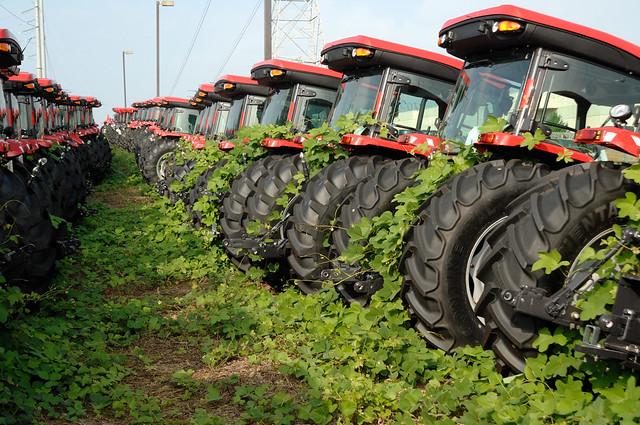 Tractors and Kudzu