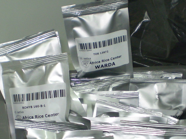 Packets of Seeds from WARDA being Prepared for Shipment to Svalbard