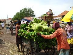 India - Koyambedu Market - Market 08