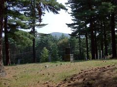 Old Pine Tree Cemetery, Lebanon, NH
