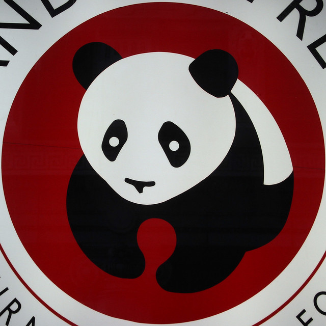 Panda Chinese Food On Rockaway Blvd