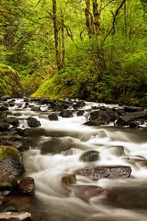 """Bridal Veil Creek"""