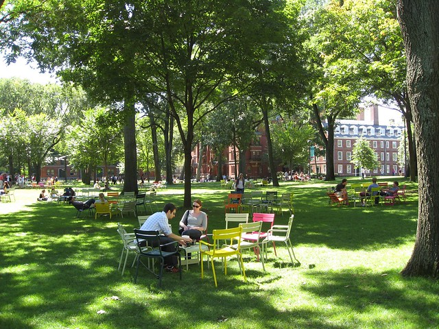 Harvard Lawn @ Cambridge