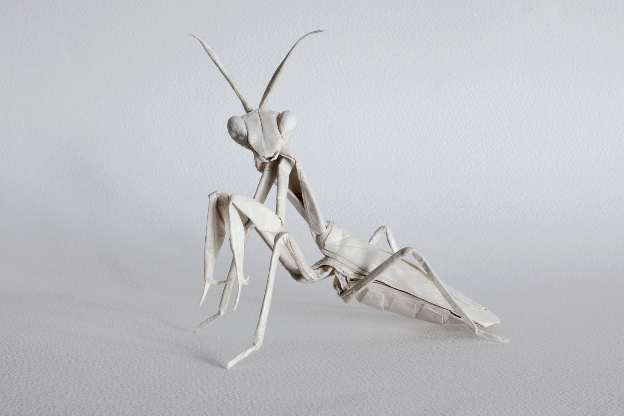 galleries print origami designs fubiz�