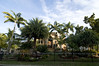 Landscaping Sarasota Florida with Tropical Palm Trees