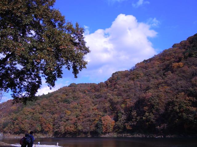 烏山 那珂川の紅葉