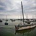 Small photo of Boats Afloat