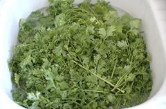 apiales(0.0), vegetable(0.0), brassica rapa(0.0), plant(0.0), produce(0.0), dish(0.0), vegetarian food(1.0), herb(1.0), rapini(1.0), food(1.0), coriander(1.0), fines herbes(1.0),