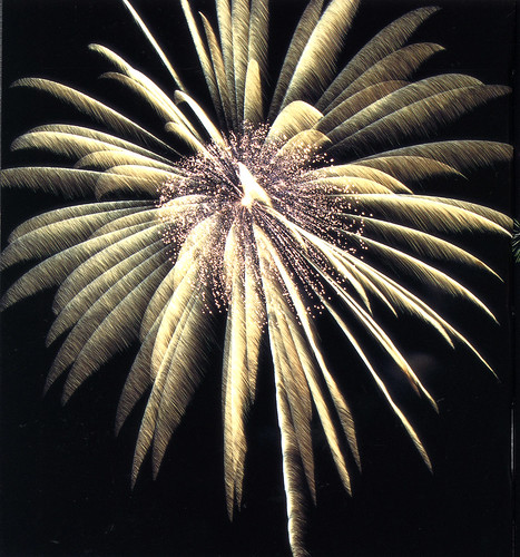 Huge Silver Crackling Palm Break - Epic Fireworks