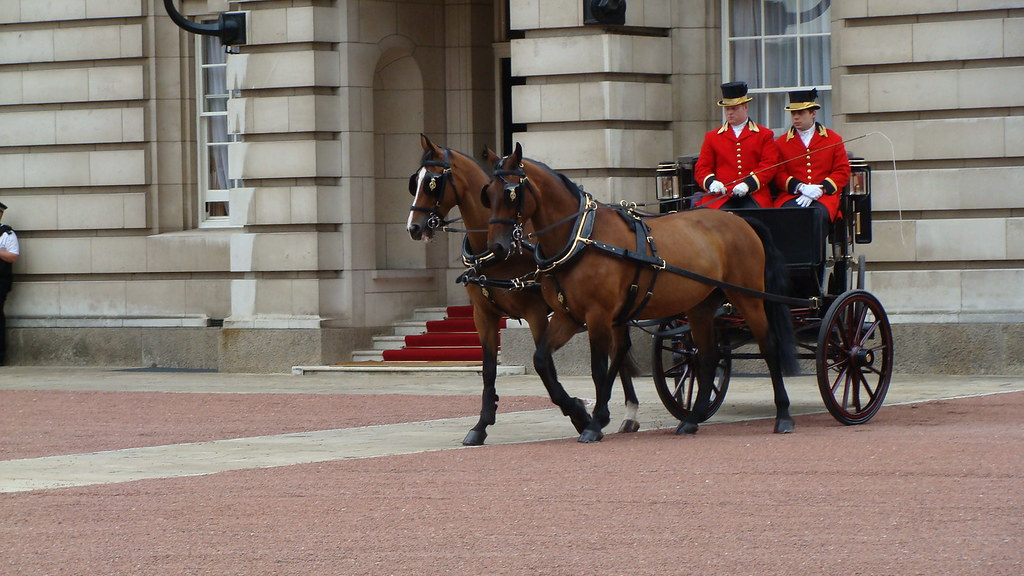 Horse (Cleveland Bay) Drawn Brougham Carriage, Buckingham Palace, Westminster, London