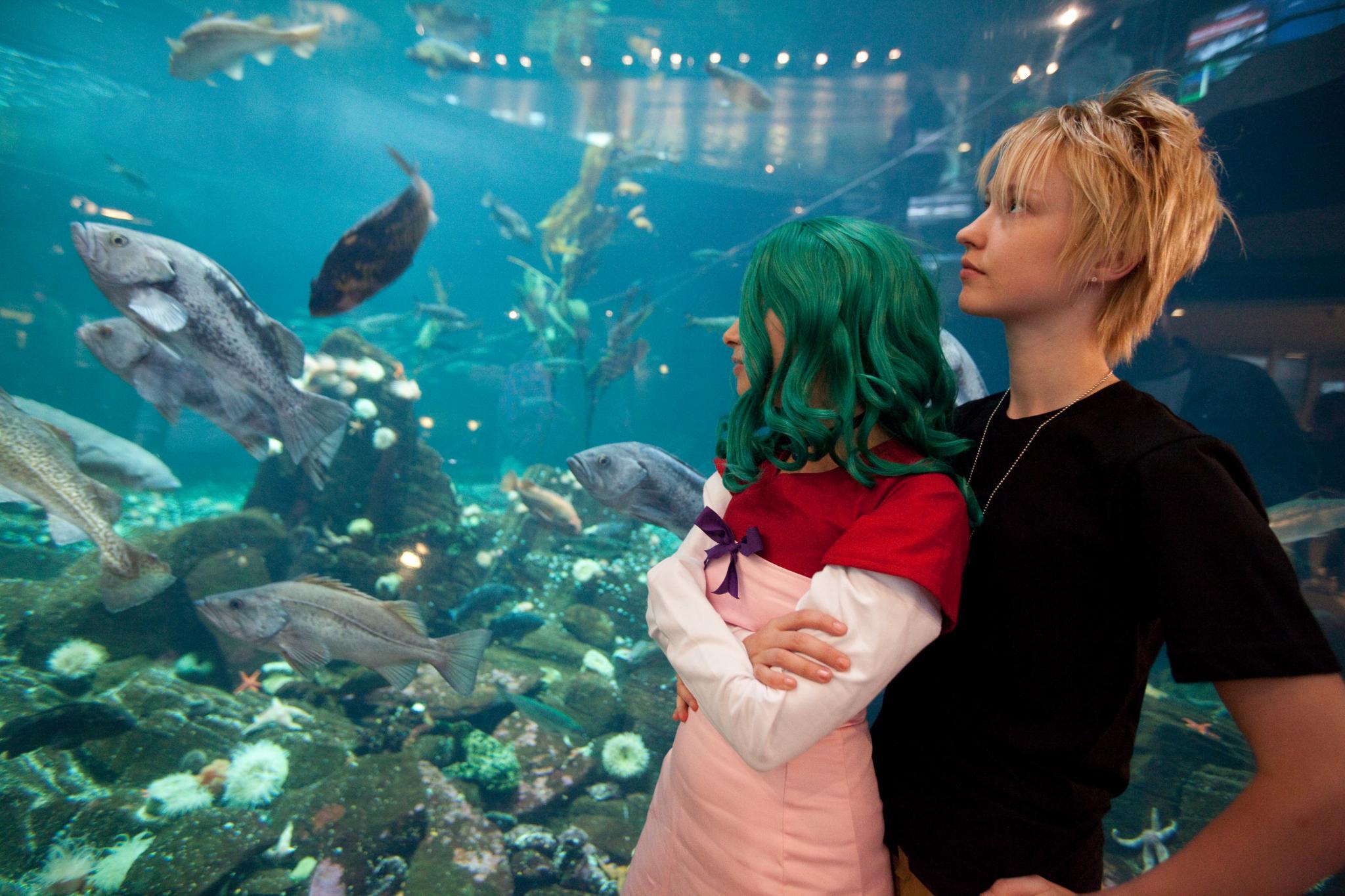Aquarium dates :) | How many R's? | Pinterest