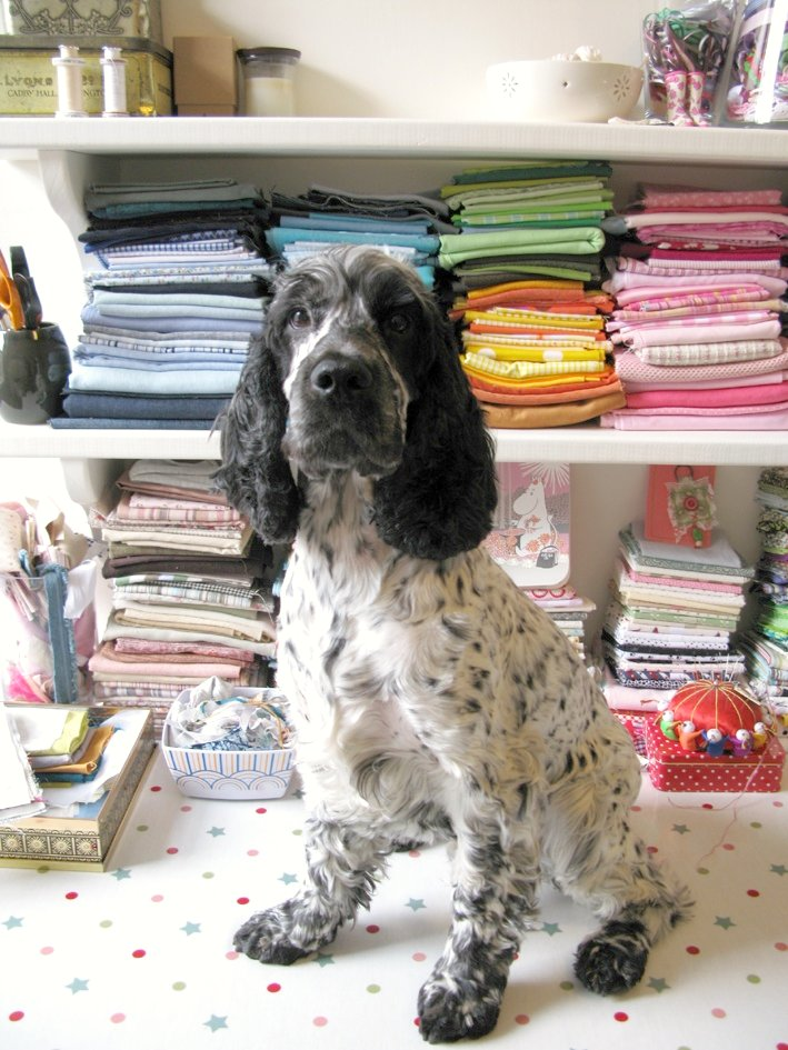 A very special edition of 'happy desk thursday' featuring Spanner the English Cocker Spaniel! | Emma Lamb