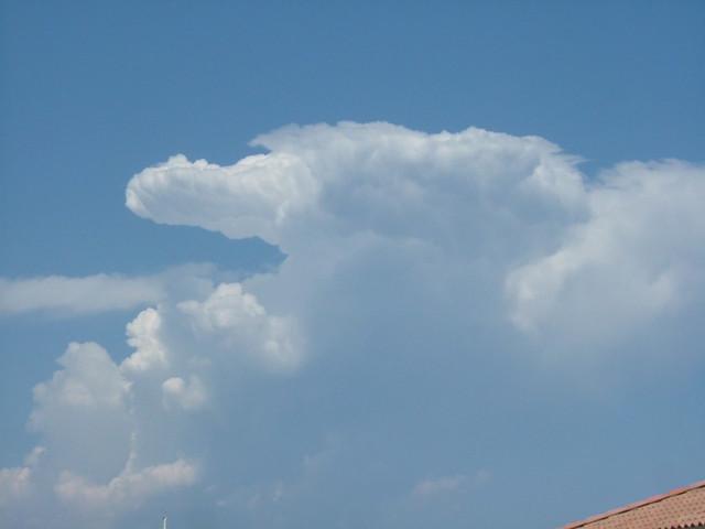 Anvil Cloud | Flickr - Photo Sharing!