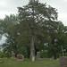 Big Stone Cemetery