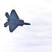USAF-ACC F-22 Raptor