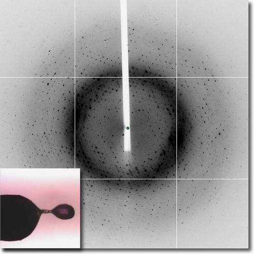 Ice Rings X Ray Crystallography