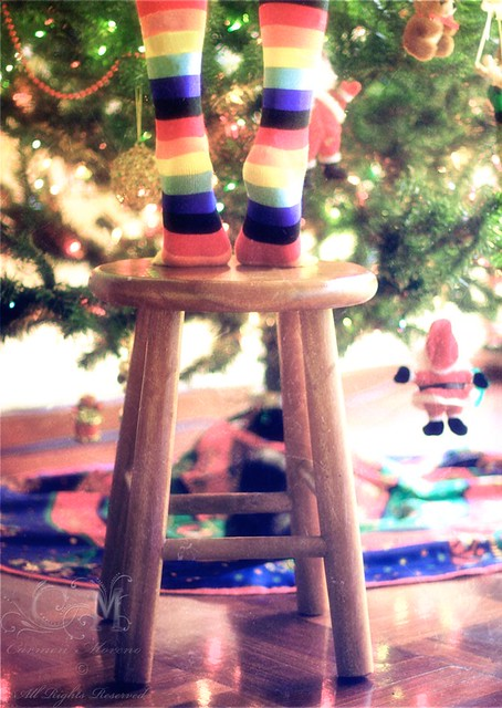 Full of Christmas Colors  (334/365)