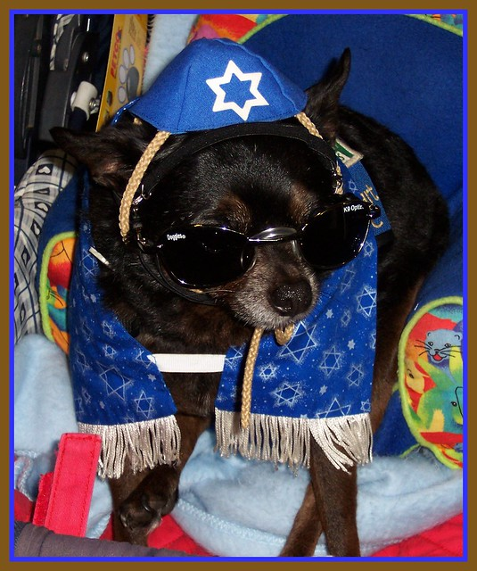 Jewish Princess II...