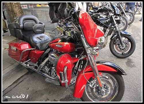 Harley Davidson 24