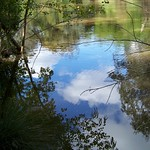 Yarra River reflections 2
