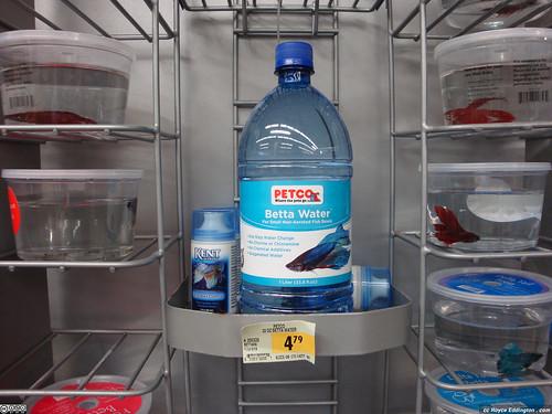 5 fishy fee royce eddington for Bottled water for betta fish