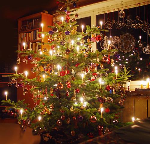 Christmas tree / Weihnachtsbaum / Christbaum / Tannenbaum - 無料写真検索fotoq