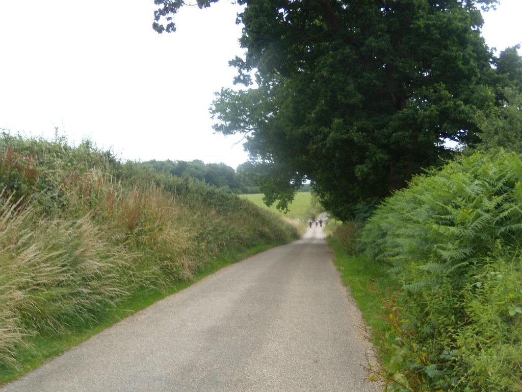 Road scene Ashurst to Hartfield
