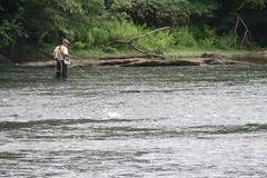 fishing, river, outdoor recreation, recreational fishing, fly fishing,