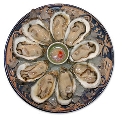 20091000 - Oct-Nov Shellfishing Season